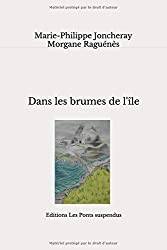 Dans les brumes de l'île: roman