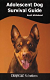 Adolescent Dog Survival Guide - Dogwise Solutions