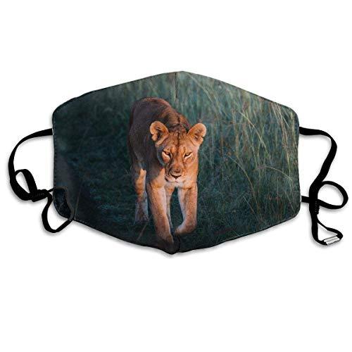 Leopard Halb Maske - Daawqee Mund Maske, Walking Leopard Unisex
