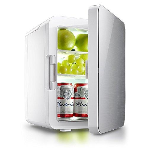 GHL 10L Auto Kühlschrank Tragbarer Minikühler Kühlthermostat 220V und 12V Netzteil Geeignet für Familie, Büro und Automobil (Silber)