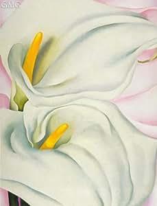O'Keeffe (2–Lis Calla Rouges sur fond rose, 1928 (21,7 Box Prints Reproduction x 16,1 en) (55 x 41 cm