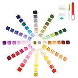 Flysee Hilo de Punto de Cruz 74Tipos de Colores Hilos de Bordar poliéster algodón, Kit de Hilos Cross Stitch Bordado contiene Floss Bobbins con número de color para Todo Amantes de punto de cruz