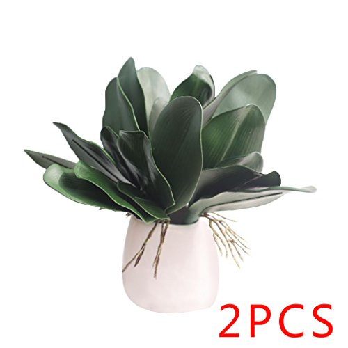 babysbreath-2pcs-artificiale-orchidea-phalaenopsis-foglie-pianta-in-vaso-foglia-home-office-decorati