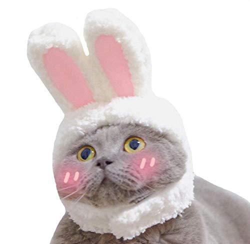 Grenhor Haustierkostüm, Hut, Hasenohren, für Cosplay, Hunde, Katzen, Welpen, Haar-Accessoire für Halloween, Weihnachten, Party