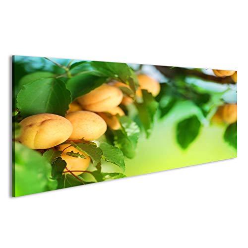 Bild Bilder auf Leinwand Aprikose Wandbild, Poster, Leinwandbild KAO