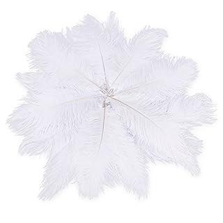 TOOGOO(R) 20 x plume d'autruche naturel 25-30cm blanc fetes decoration