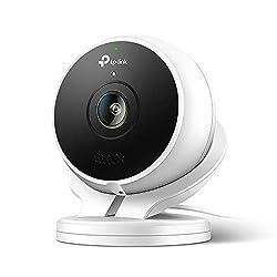 TP-Link Kasa Smart Outdoor Cloud-Kamera, kompatibel mit Alexa (Echo Spot, Echo Show und Fire TV, Google Home/Chromecast und IFTTT, 1080p HD, Nachtsicht mit 2-Wege-Audio,  wetterfestes Gehäuse)