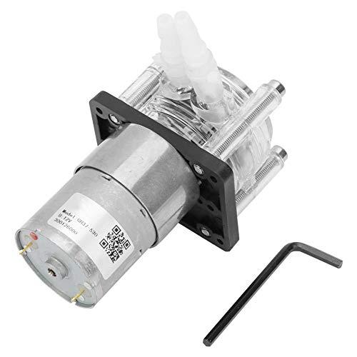 Peristaltische Pumpe mit großem Durchfluss, Vakuumdosierung, starke Saugpumpe + DC12v-Schrittmotor für Aquariumsilikonschlauch