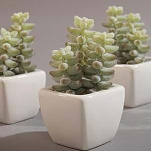 Cactus artificiel plante fleurs artificielles pot mini for Mini cactus artificiel