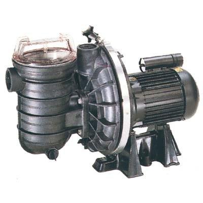 Pumpe Pool sta-rite 5P2RC 0,50CV 8,5m3/h Tri (Sta-rite Pumpe)