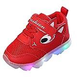 QinMM Kleinkind Baby Girs LED Licht Schuhe, Jungen Weiche Luminous Outdoor Sportschuhe Herbst Winter Turnschuhe Rot Weiß Rosa 20 EU-29 EU (22 EU, Rot)