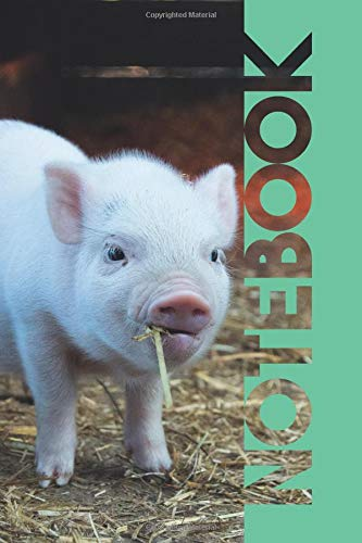 Notebook: Cute Piglet Petite Composition Book for Researching Mini Pigs For Sale Near Me por Molly Elodie Rose