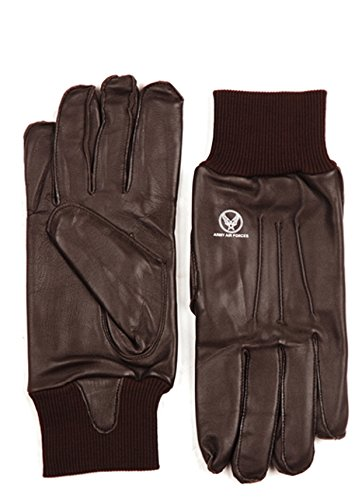 A-10 / A10 Leder Handschuhe / Fliegerhandschuhe / Piloten Handschuhe Flight Gloves USAAF Airforce (L) (Force Handschuh Air)
