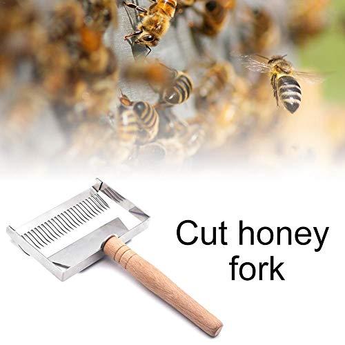 hifuture Bienenstock Honig Gabel Abnehmbare Bienenstockklinge Bienenstock aus rostfreiem Stahl der Honiggabel Schaber Schaufel Holzgriff Imkerei Werkzeug 248 mm 133 mm