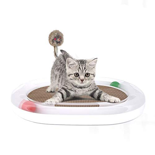 ETH Haustier Spielzeug Katze Kätzchen Scratch Board Kleine Lustige Rod Ball Katze Plattenspieler Klaue Klaue Pflege Spielzeug Katzenspielzeug Maus Bett Sofa Für Katze Geschmack -