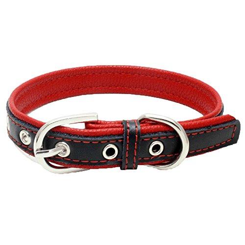 Balock Schuhe Welpen Hundehalsbänder,Einstellbare Schnalle Hund Welpen Hundehalsbänder,Puppy Cat Halskette für Kleine, Mittlere,Hunde,für Mädchen Jungen (Rot, XS) -