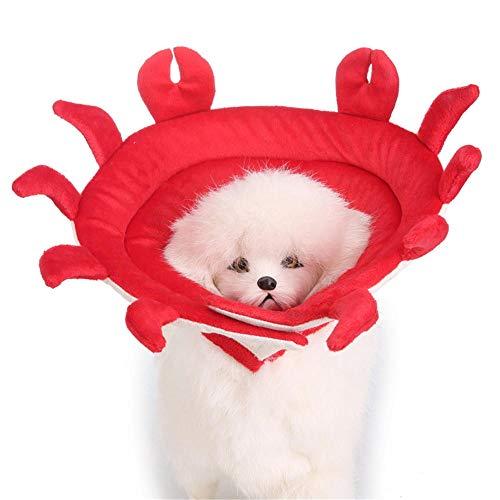 üm Hundekleider Hund Kostüm Schutzkragen Beauty Kragen, Kuh_M ()