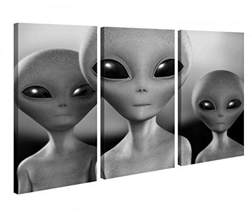 Leinwandbild 3 Tlg Alien Aliens UFO Mars Mensch Kinderzimmer Schwarz weiß Leinwand Bild Bilder Holz 9P1049, 3 tlg BxH:120x80cm (3Stk 40x 80cm)