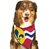 Rghkjlp Flag of St. Louis, Missouri Pet Bandana Washable Reversible Triangle Bibs Scarf - Kerchief for Small/Medium/Large Dogs & Cats