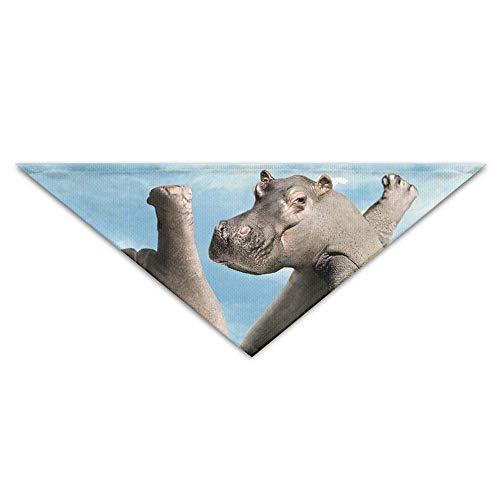 Gxdchfj Pet Triangle Bandana Hippo Ballet Dancing Art Washable Dog Puppy Scarf Bib Babys Neckerchief Accessories (Hippo Kostüm Für Katzen)