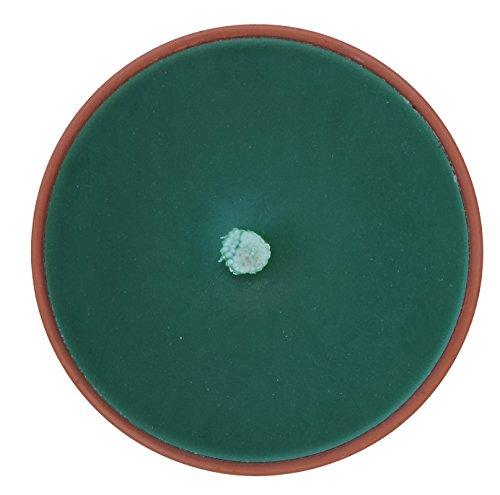 clapur 2x Flammschale in Terrakotta Schale, 155 x 34 mm, grün, Outdoorkerze mit 7h Brenndauer