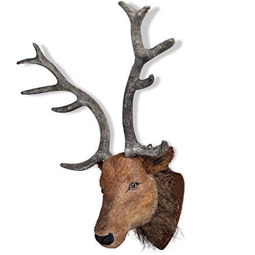 testa-di-cervo-decorazione-fissata-al-muro-aspetto-naturale