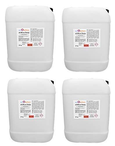 well2wellness pH Minus flüssig/pH Senker flüssig - 4 x 25 kg Kanister