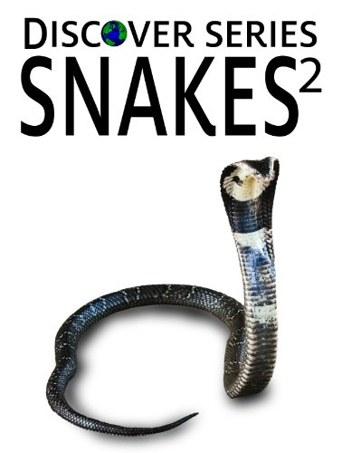 Snakes 2: Discover Series Picture Book for Kids (Kindle Kids Library) (English Edition)