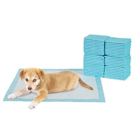 TERRA SELL Premium Hunde-Toilette – 50er Set Hygiene Unterlagen für Haustiere – Saugstarkes Hundeklo – Welpentoilette…