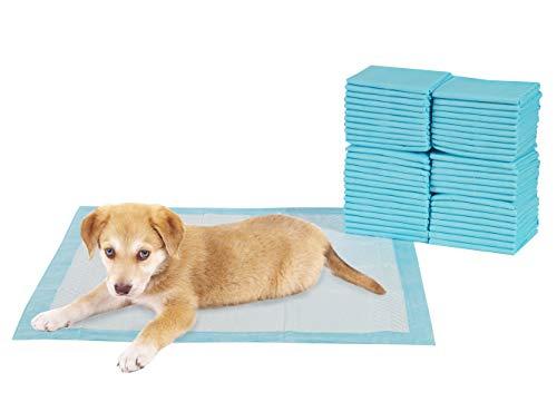 TERRA SELL Hochwertige Unterlagen für Welpen, Hunde und Haustiere, Welpentoilette, Stubenrein Unterlagen 50 Stück 56 x 56 cm