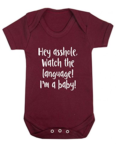 Hey Asshole Watch The Language, I'm A Baby! Funny Offensive One Piece Baby Grow Bodysuit Vest
