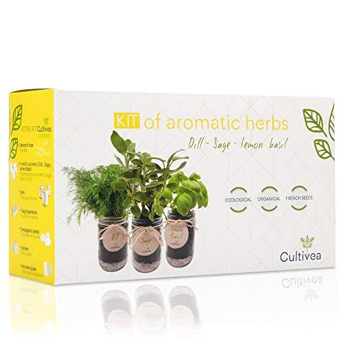 Photo Gallery cultivea set completo - fai crescere le tue di erbe aromatiche - 100% semi ecologici e biologici - semi con 3 vasetti di vetro (salvia, aneto, basilico limone) - do it yourself -