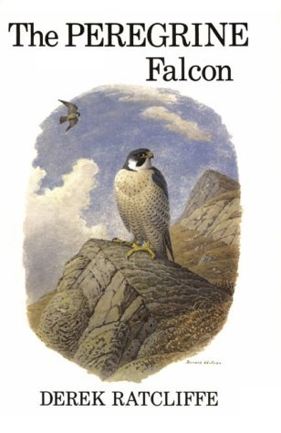 The Peregrine Falcon, First Edition by Derek A. Ratcliffe (1980-01-01)
