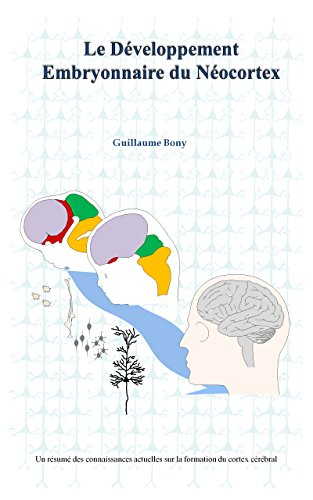 Descargar Libro Le développement embryonnaire du néocortex de Guillaume Bony