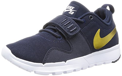 Nike Trainerendor, Chaussures de Tennis Homme