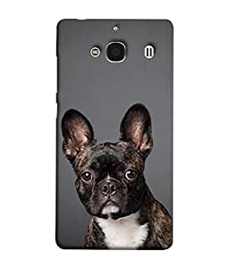 Fuson Designer Back Case Cover for Xiaomi Redmi 2 :: Xiaomi Redmi 2S :: Xiaomi Redmi 2 Prime (walk when I want to fly will )
