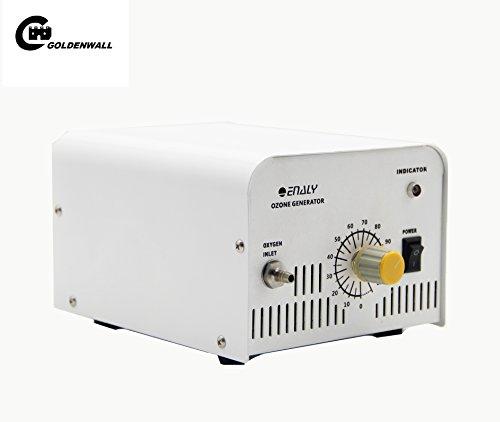 cgoldenwall 1knt-24 Gewerbliche Nutzung Timing Ozon-Generator Labor Luft Wasser Luftreiniger Ozon Desinfektion Maschine Ozon Making Maschine Maker 100-240V 1000mg/HR - 110V (Ozon-maker)
