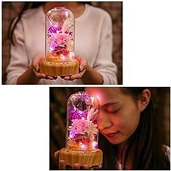 Rose Eternelle Romantique avec Lampe de Chevet Led+Haut-Parleur Bluetooth,PanDaDa Conservé à Jamais Rose,Cadeau Unique pour Fête des Mères,Elle,Veilleuse à Led Fleur Enchantée avec Lecteur de Musique