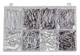 700 Mehrzweck-Nägel-Sortiment Drahtstifte 5Gr.16-40mm