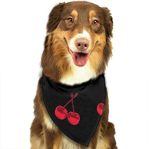 Wfispiy Cherry Fashion Pet Bandanas Dog Car Neck Scarf for Unisex Pet Boy Girls