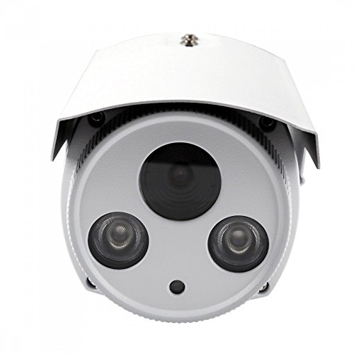 Foscam FI9903P Telecamera, HD 2.0 MP, H.264, 1080P Full HD, 70°, Esterno, Visore Notturna, Rilevatore Movimenti, Alerte Mail/FTP, Compatibile iPhone e Android