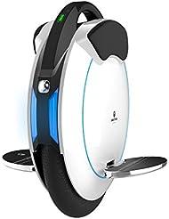Martillo inMotion V5F eléctrico monociclo, unisex, Inmotion V5F, weiß