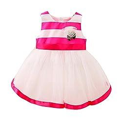 Infants Princess Dress, Transer® Baby Girls Trendy Dress 0-24 Months Kids Clothes born Toddler Girls Striped Dress Sleeveless Layered Tulle Tutu Princess Dress