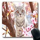 Luancrop Mousepads Katze nett auf blühendem Garten-Baum draußen Tier-aktive Natur-Haustier-länglichem Spiel Mousepad rutschfeste Gummimatte