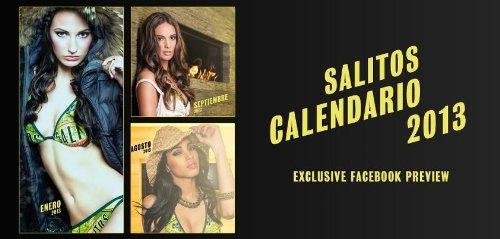Preisvergleich Produktbild Salitos Kalender 2013 Erotik Pirelli sehr selten Sammler NEU Facebook Modelle * Streng Limitiert * NEU/OVP--2013, EROTIK - EROTIC - EROTICA - KALENDER - CALENDAR Fotokalender, Wandkalender
