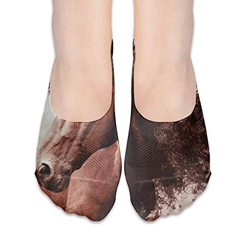 Eybfrre No Show Socks Horse Print Low Cut Liner Socks Casual Hidden Thin Socks for Women (Champion Herren Low-cut-socken)