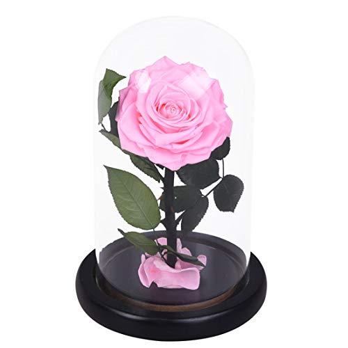 Lwkbe fiore rosa in fiore a forma di rosa con petali caduti in vetro cupola su base in legno con scatola regalo san valentino festa della mamma compleanno di natale,pink