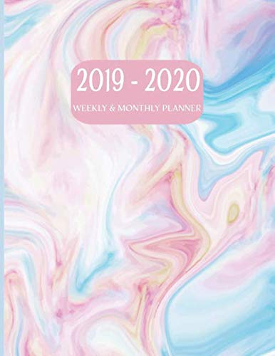 2019-2020 Weekly and Monthly Planner: Academic Planner Organizer (July 2019 through June 2020) - Pink Swirl -