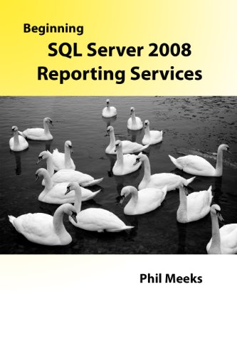 Beginning SQL Server 2008 Reporting Services