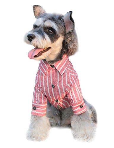 Gyapet Hund Shirt für Kleine Medium Tuch T-Shirt Kleid Gestreift Formale Sanfte Anzug Casual Cool, 2XL-Body Length 16